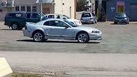1999 Ford Mustang 1999 Coupe (2 door)