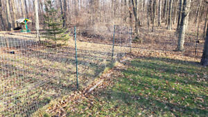 FENCE - 180 feet of 2x3 inch metal mesh fence and 18 posts.