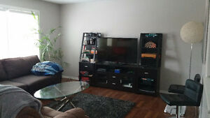 Professionals Wanted - Rooms for Rent