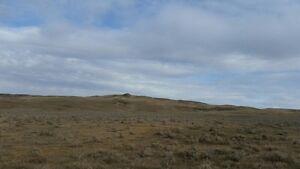 Wanting Acreage/Ranch/Small Farm/Land