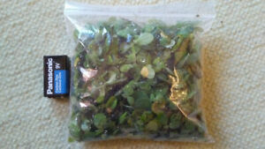 Mini lettuce aquarium plant for sale