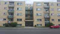 Renovated NDG apartments with balconies in clean safe building