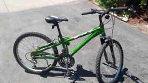 miele mountain bike