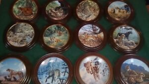 12 Collectible plates plus wooden mounting rings Wild Cats