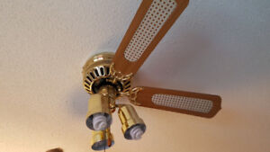 Ceiling fan with lights