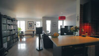 Lovely and spacious 4 1/2 _ST.HENRI_ATWATER_CANAL LACHINE
