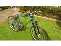 Saracen Matrax 24 speed mountain bike..free speedo free D-lock
