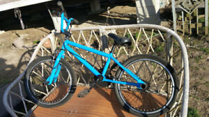 Raleigh Carlton Mountain Bike & Diamondback BMX