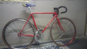 Fixed Gear Bike Vintage Frame by Gardin