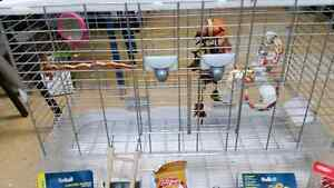 Living World bird cage for canary, finch or budgie