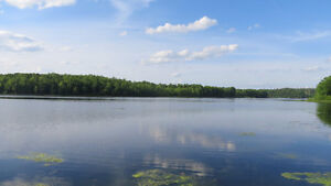 1320 Howes Lake Lane N - 7 Private Acres on Waterfront! Kingston Kingston Area image 8