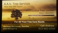 For All Your Tree Care Needs