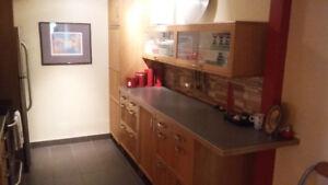 fully renovated 4 1/2 apartment in heart of verdun
