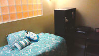 Subletting 1 room at 158 Erb (4 months - Winter 2016)