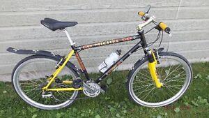 Bicycle de Montagne,Urbain, Ville, RALEIGH de 24 vitesses.