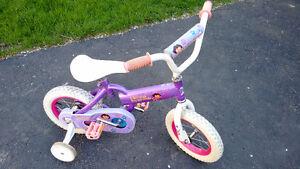 Girls Dora Bicycle
