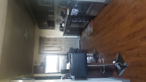 2BR apartment Sublet/ lease takeover -month of january