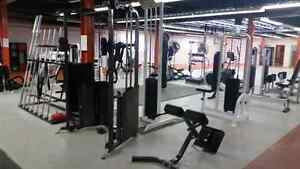 New Year SPECIAL! 50% off your first month of training! Kitchener / Waterloo Kitchener Area image 7
