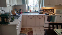 Century home, garage, huge fenced yard, only pay hydro!