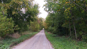 HERE IT IS, 1.6 ACRE BUILDING LOT Kawartha Lakes Peterborough Area image 8