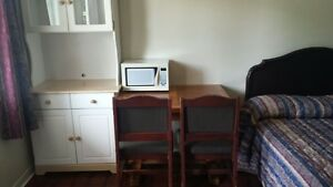 MADOC AREA FURNISHED ACCOMMODATIONS WITH KITCHENETTE Belleville Belleville Area image 10