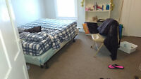 Need a new life? JUST $371 / m. downtown +1 roommate