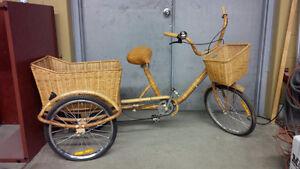 Bike Wicker Cambridge Kitchener Area image 1