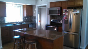 Basement renovations kitchens, bathrooms and more !! Windsor Region Ontario image 3