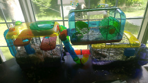 Hamster / gerbil cages plus food ,shavings and accesories