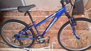 Almost brand new Norco Mountaineer 24 speed.