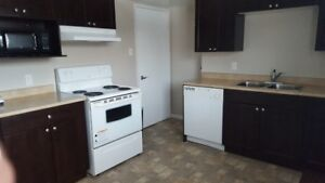Fully Furnished Townhomes