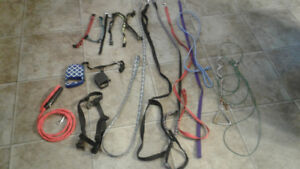 Selling variety of dog leashes, collars for small dog
