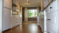 Renovated Main Floor in Spruce Cliff SW Available Now!