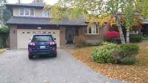 GREAT 5 BEDROOM HOUSE NEAR UWO to SHARE- rent May 1