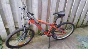 Youth or small adult bike