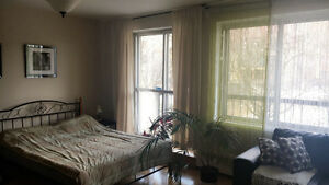 May/June Sublet - Beautiful Downtown Montreal Apartment
