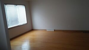 House for rent - 3 bedroom bungalow for rent available Kitchener / Waterloo Kitchener Area image 2