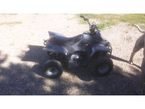 Used 2010 Taotao 2 Wheel Drive Automatic
