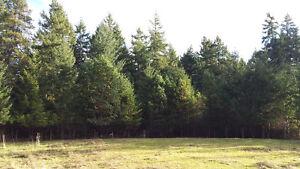 Home and Acreage in Nanoose Bay, Parksville Nanaimo area
