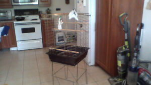 Bird Cage (Lg 48 inch tall) $40 WOW