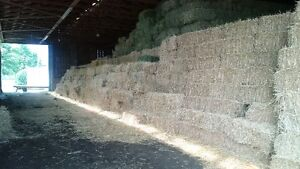 Square Hay and Straw Bales London Ontario image 3