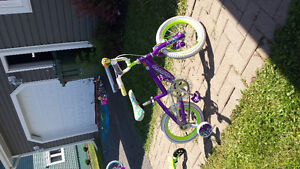 14 inch girls bike
