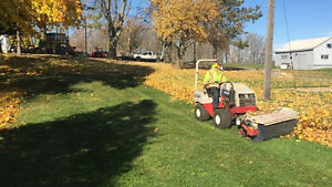 Fall / Leaf / Yard cleanup / Eavestrough Cleaning Kitchener / Waterloo Kitchener Area image 1
