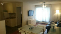 Fully Renovated Furnitured 1 BR Condo Walking distance to downto