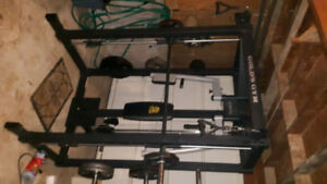 Golds Gym Multi function fitness unit