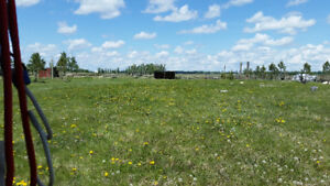 Acreage Land For Rent - Red Deer County - 5 - 30 Acres Available