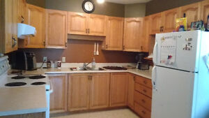 Large 3 bedroom place looking for one roommate