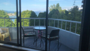 Downtown Furnished 1 Bedroom with Balc/Ocean View *DEC 1st-31st*