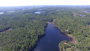Loggers Paradise! Waterfront! Over 90 Acres!