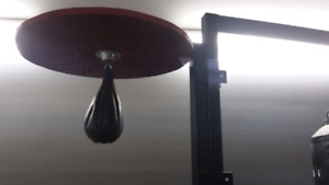 Punching Bag with Speed Bag